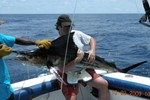 First marlin for Jacco