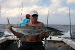 Kingfish took care of the marlin bait