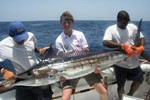 marlin 2 richard